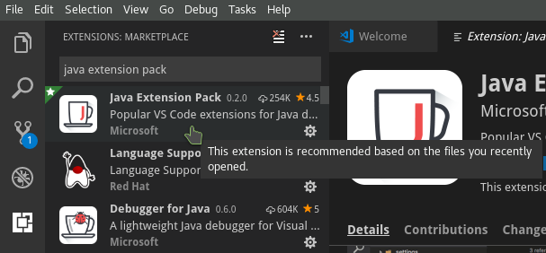 The Java Extension Pack from the Extension Marketplace.